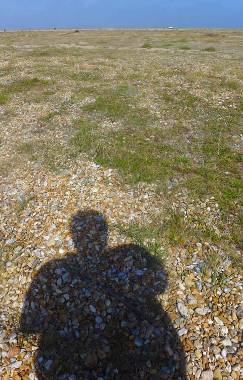 Dungeness Shadow 3