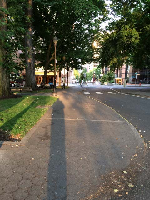 Portland Summer Shadow